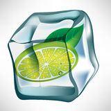 Ice cube with lemon slice Royalty Free Stock Photo