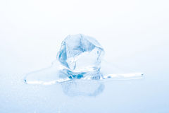 Ice cube is melting Royalty Free Stock Photography