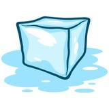Ice Cube Melting Stock Image