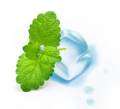 Ice cube with mint leaf. On white background royalty free stock image