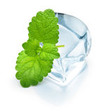 Ice cube with mint leaf Stock Image