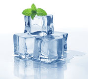 Ice cube and mint. On white Royalty Free Stock Photo