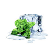 Ice cube Royalty Free Stock Photo