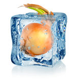 Ice cube and onion Royalty Free Stock Images