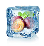 Ice cube and plum Royalty Free Stock Images