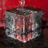 Ice cube with running water stock images