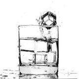 Ice cube splashing in a cool glass of water Stock Images