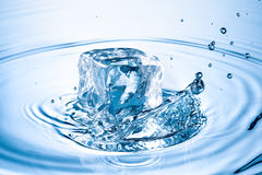 Ice cube splashing in water Stock Image
