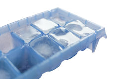Ice cube in tray Royalty Free Stock Photography