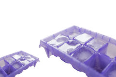 Ice cube in tray Royalty Free Stock Image