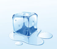 Ice cube and water. Ice cube on water surface, illustration Royalty Free Stock Photography
