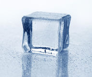Ice cube. And water drops on wet background Royalty Free Stock Photos