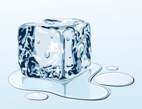 Ice cube on water surface Stock Image