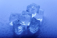Ice cubes. Melting ice cubes with blue water drops Stock Photo