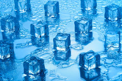 Ice cubes. Melting ice cubes on a mirrored background Stock Photography
