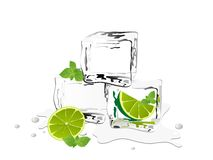 Ice cubes. With fresh lime and mint royalty free illustration