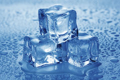 Ice cubes. Royalty Free Stock Image