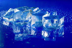 Ice cubes Stock Image
