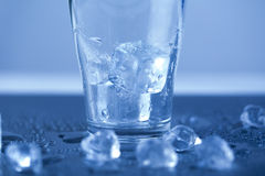 Ice cubes, alcohol drink Stock Photography