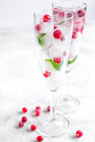 Ice cubes with berries and mint in glasses for summer drink white background Royalty Free Stock Photos