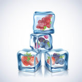 Ice Cubes With Berries Royalty Free Stock Photography