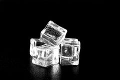 Ice cubes on black wet table. Selective focus Royalty Free Stock Images