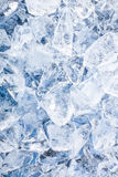 Ice cubes. Blue background Royalty Free Stock Photo