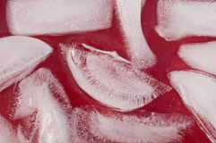 Ice cubes close up. Ice cubes in red juice close up Stock Photo