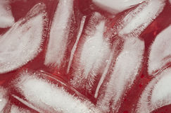 Ice cubes close up. Ice cubes in red juice close up Stock Photography