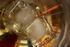 Ice cubes close up melting in alcohol glass. Bright colors. Royalty Free Stock Images