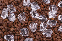 Ice cubes and coffea beans. Is background Stock Image