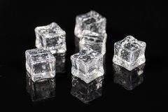 Ice cubes with drops of water on the black background with reflections.  royalty free stock image