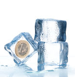Ice cubes with euro coin inside. On a white background Royalty Free Stock Photography
