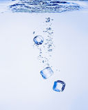 Ice Cubes in Water Royalty Free Stock Images