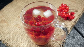 Ice cubes falling into a cup of tea with viburnum.  stock footage