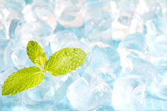 Ice cubes and fresh mint leaves abstract background Royalty Free Stock Photo