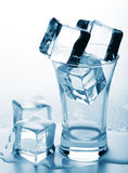 Ice cubes in glass Royalty Free Stock Photography