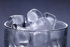 Ice cubes in glass Stock Images