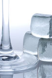 Ice cubes and glass foot Royalty Free Stock Photos