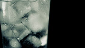 Ice Cubes Glass Water Bubbles Black Background stock video