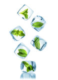 Ice cubes with green mint leaves Stock Photos