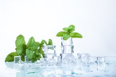 Ice cubes. And mint leaves  on a white background Stock Image