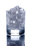 Ice Cubes In Glass Stock Photography