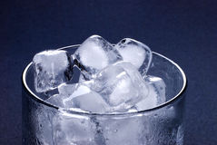 Free Ice Cubes In Glass Stock Photography - 6461362