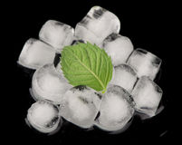 Ice cubes isolated on black Royalty Free Stock Photography