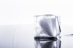 Ice cubes isolated Royalty Free Stock Photography