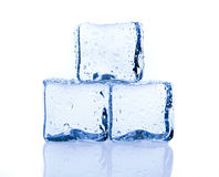 Ice cubes isolated on white Stock Photography
