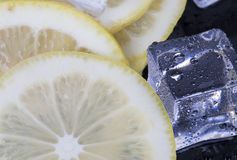 Ice cubes and lemon slices Royalty Free Stock Image