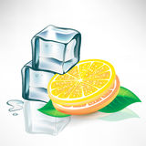 Ice cubes and lemon slices with mint Stock Photo