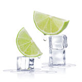 Ice cubes and lime royalty free stock image